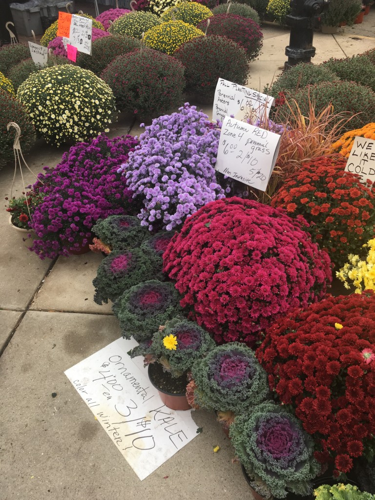 The famous farmer's market is at its very best in fall.